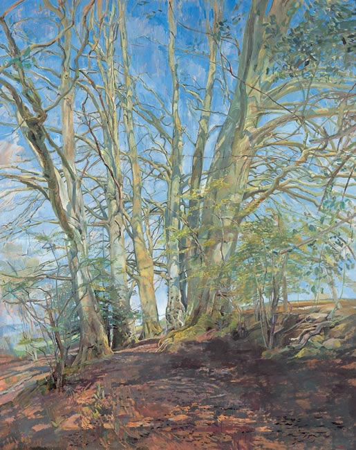 Beech Cathedral, 2002-4 (154.9 cms - 61 x 48 ins) - Sold